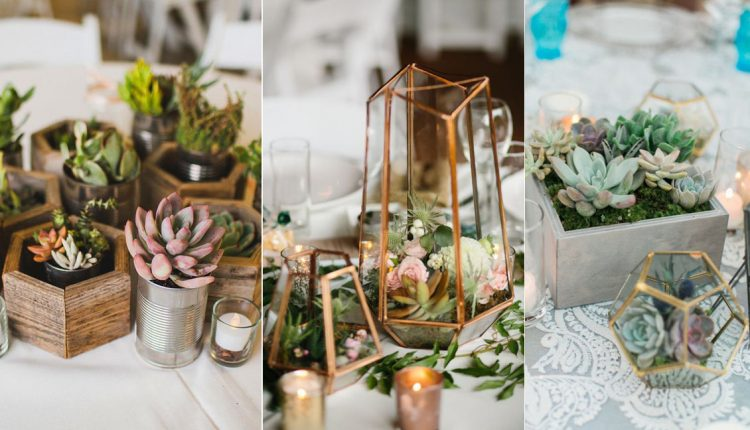 succulents wedding centerpiece