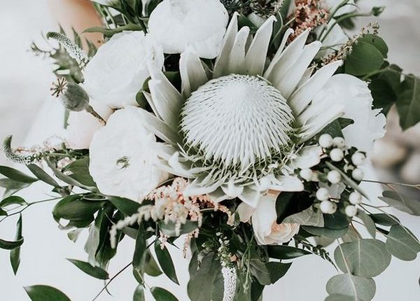 bohemian white blush and greenery wedding bouquet with king protea