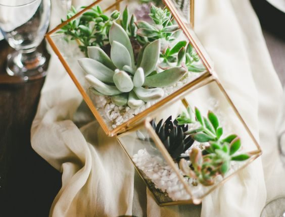 Geometric potted succulents wedding centerpiece