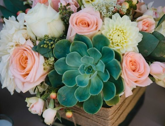 peach roses and succulent wedding centerpiece idea