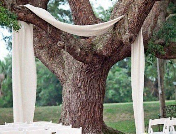 fabric draped over tree wedding backdrop