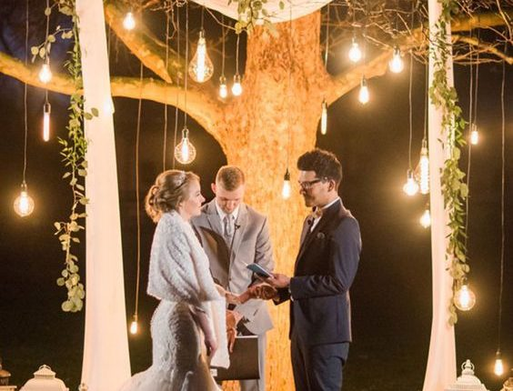 tree wedding backdrop with hanging edison light bulbs, fabric curtain and greens
