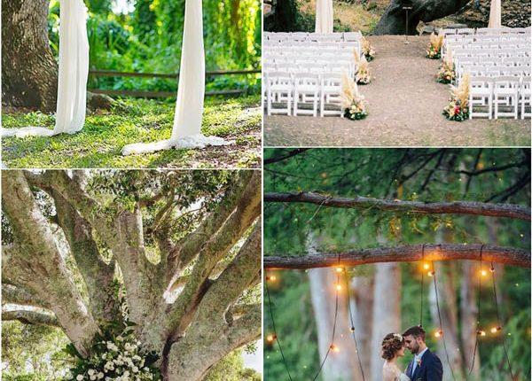 wedding tree ceremony backdrop arch idea